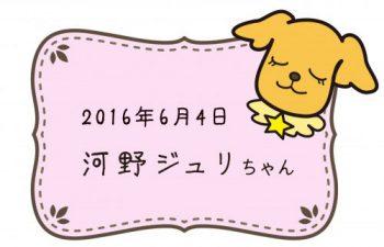 2016-06-04 河野ジュリちゃんのコピー